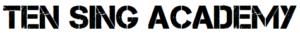 Logo TS_Academy